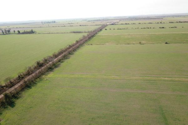 venta campo mixto agricolo ganadero las colonias