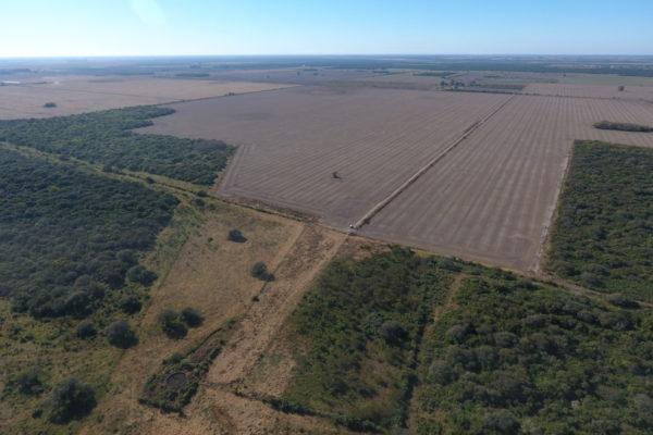 venta campo mixto agricolo ganadero la criolla san justo santa fe